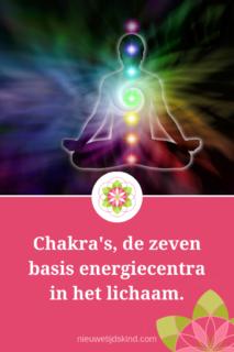 Chakra's , de zeven basis energiecentra in het lichaam.