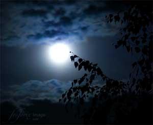 de intens donkere nacht van de ziel