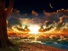 hemel-aarde