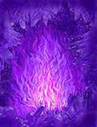 lila-vlam