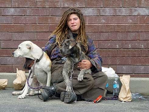 dakloos met honden
