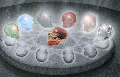 13 schedels