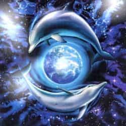 dolfijnen-aarde