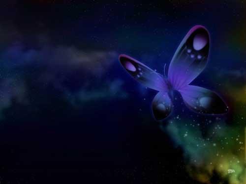 blauwe-nacht-transformatie