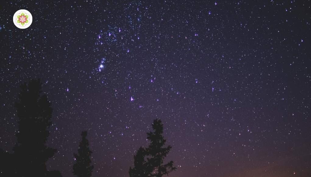 Orion.Kenmerken van degenen die Orion als hun Planetaire oorsprong hebben