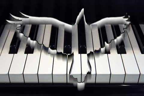 duif-piano