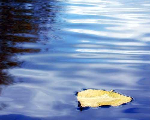 stille-wateren