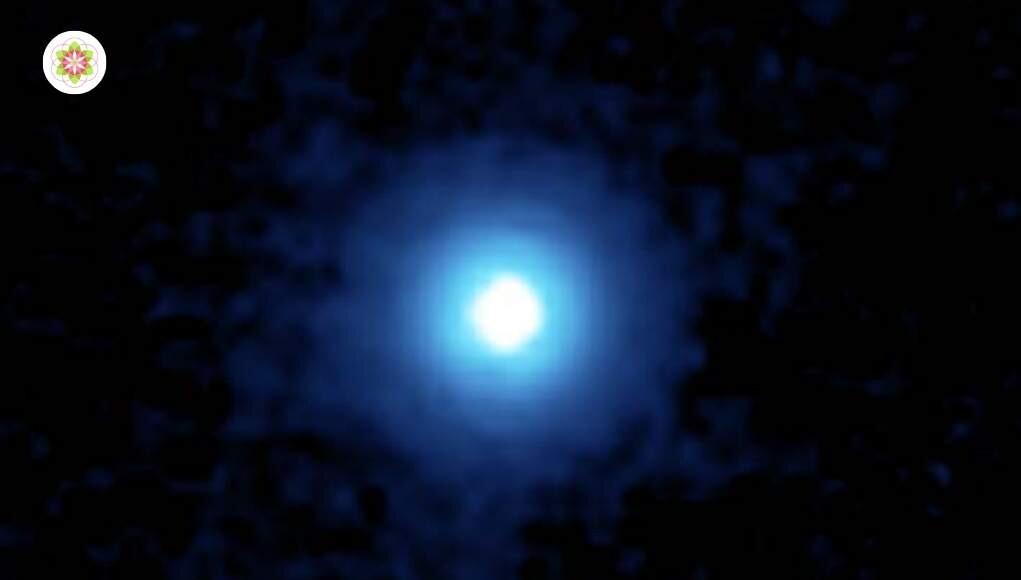 Vega. Kenmerken van degenen die Vega als hun Planetaire oorsprong hebben.