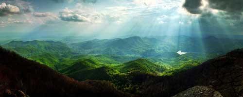 groene-wereld