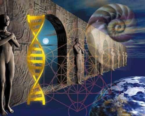 Afbeelding DNA