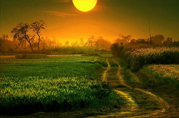 pad lopen