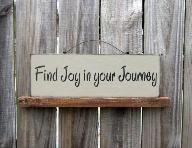 vreugde-reis