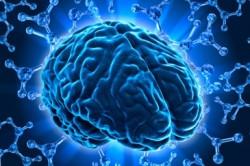 ADHD-ADD-hersenen