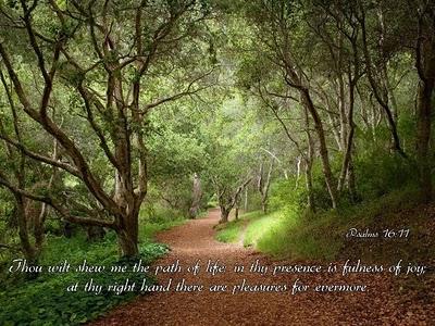 soul-fullness