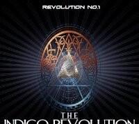 indigo revolutie