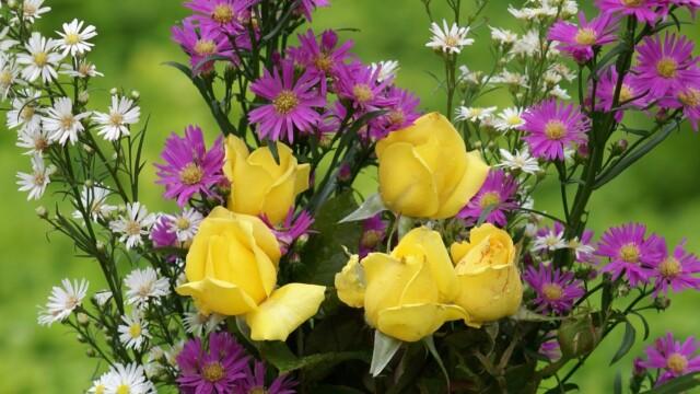 gele rozen