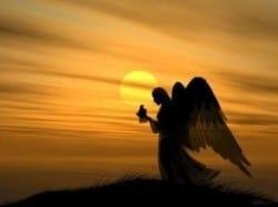 engelen-zijn-overal