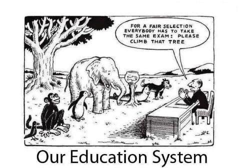 school systeem