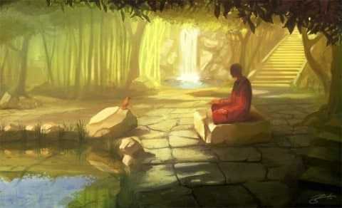 bird-buddha