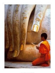 the-hand-of-buddha