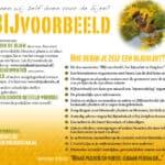 Info_BIJ-VOORBEELD_wat-kunnen-wij-zelf-doen-voor-de-bijen-