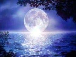 sea-moon