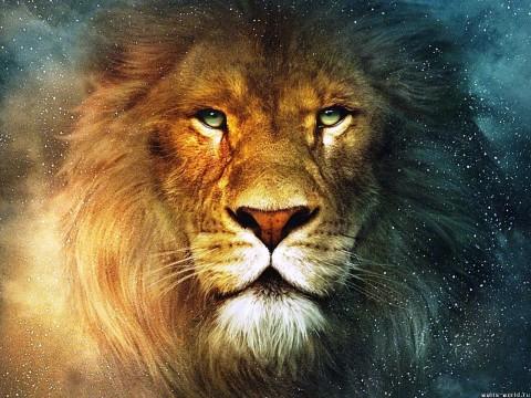 leeuw-groot