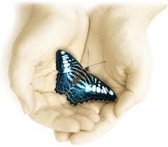 vlinder-hand