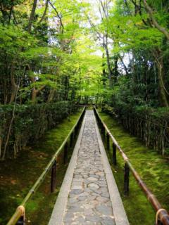 zen_walkway