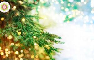 De symboliek van de kerstboom