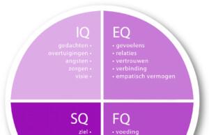 IQ-De vier typen van intelligentie