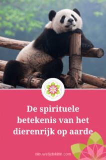 De spirituele betekenis van het dierenrijk op aarde