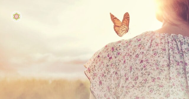 oude ziel met vlinder
