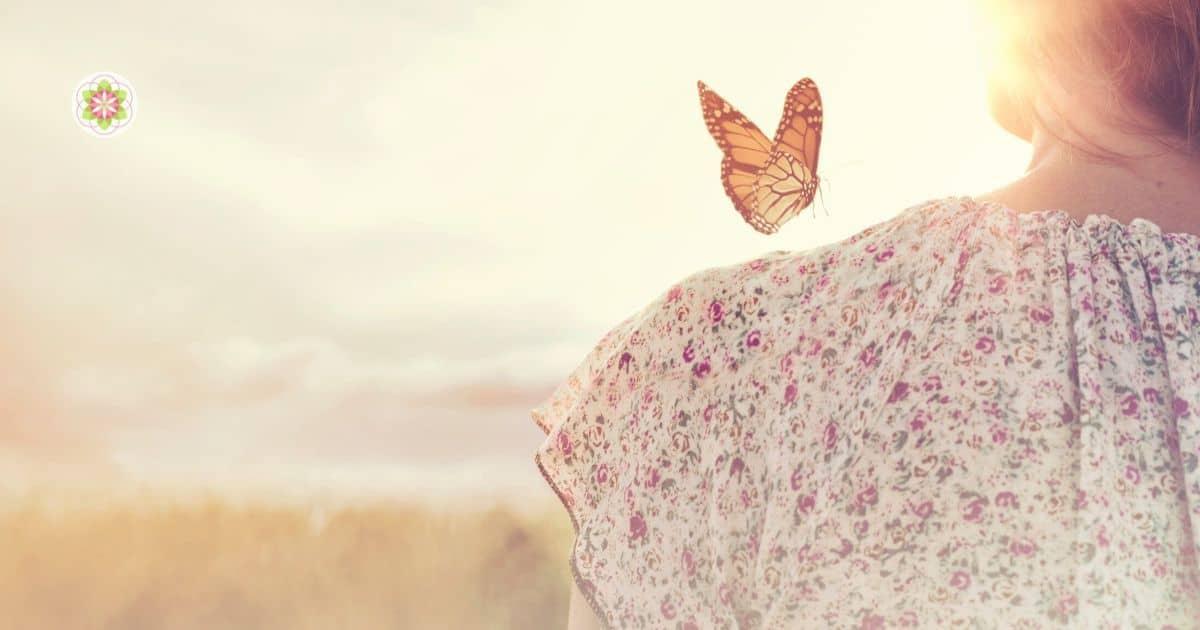 oude ziel met vlinder- de ziel