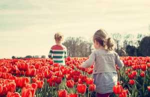 waarom franse kinderen bijna geen ADHD hebben