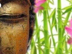 Vijf tips Hoe begin je met mediteren