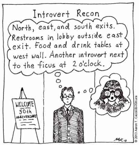 introvert 7