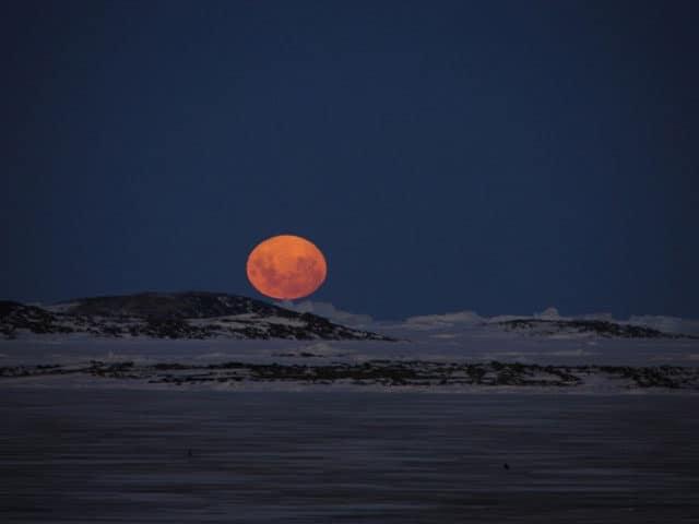 bever maan