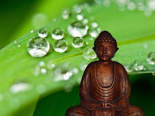 geen zin meer in mediteren