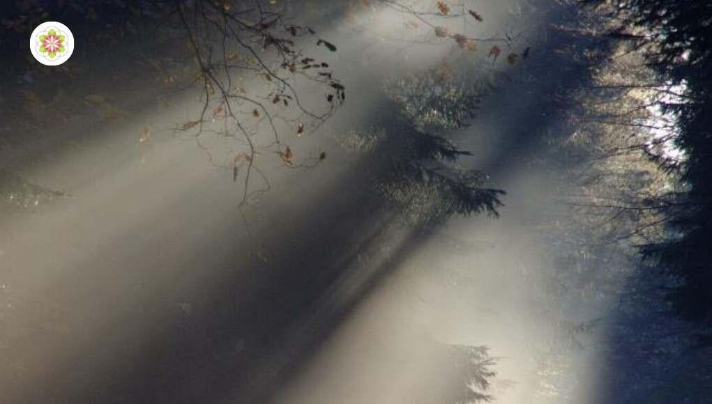 Vals licht: de valstrik van de schijnspiritualiteit
