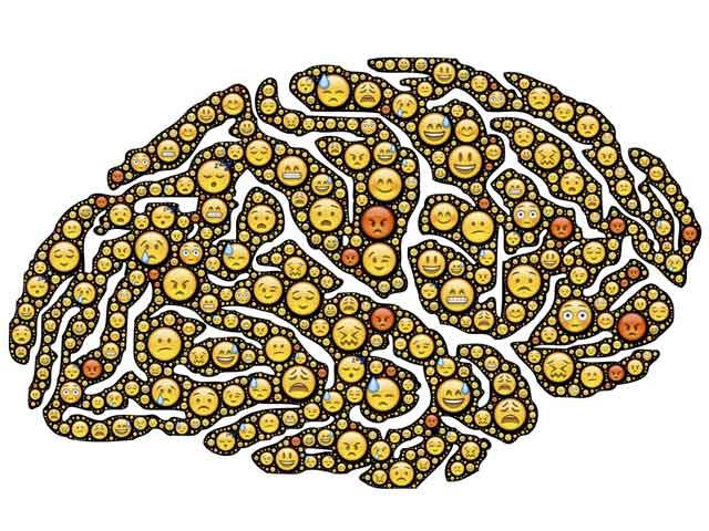 sensorische informatieverwerking