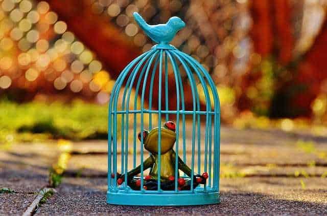 breek uit de gevangenis van je emoties