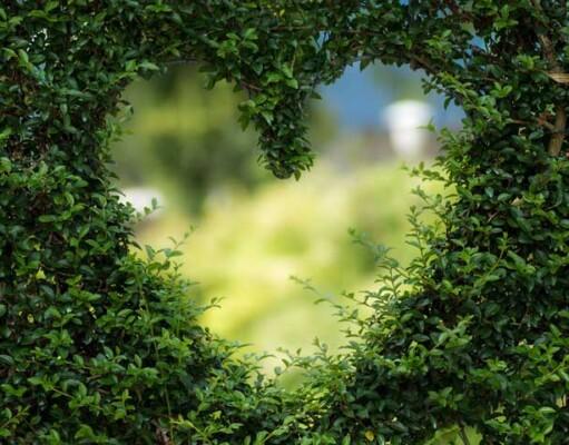 6 manieren om te leven vanuit je hart
