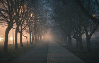 Heb je je ooit afgevraagd waarom we alleen 's nachts geesten zien?