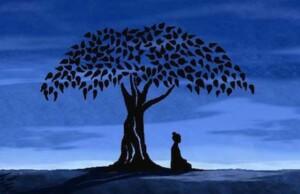 Vertrouwen en intuïtie; basis voor spirituele talenten