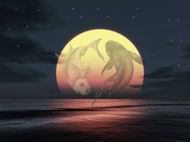 volle-maan-vissen
