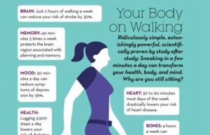 Dit is wat je lichaam doet als het loopt (infografiek)
