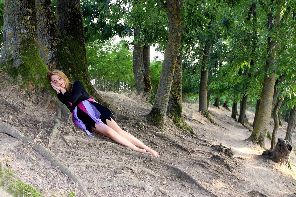 Slapen tegen een boom