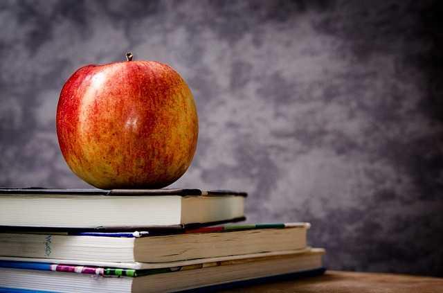 Waarom hooggevoelige personen geweldige leraren zijn
