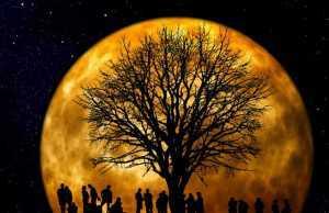 volle maan-oude maan